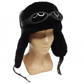 Hat with earflaps